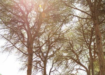marco-fotografia-premama-0078